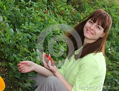 A smiling woman picking strawberries