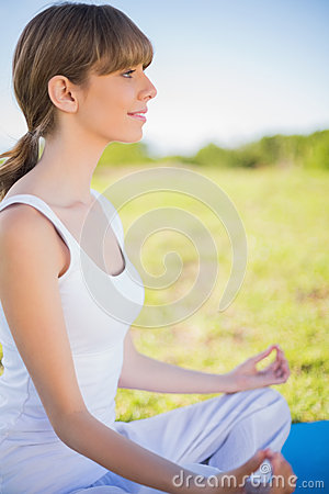Free Smiling Young Woman Meditating In Lotus Position Royalty Free Stock Images - 32969609