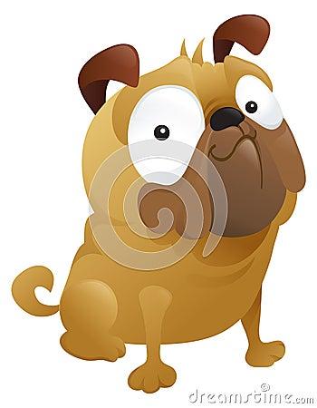 A Smirking Pug Dog