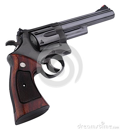 Smith wesson 44 black