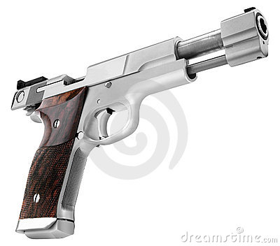 Smith Wesson .45