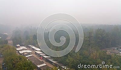 Smog under city park in summer day