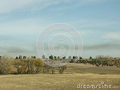 Smoke over pasture