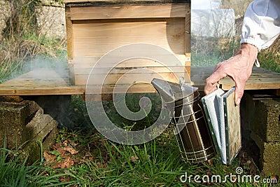 Smoker and hive.