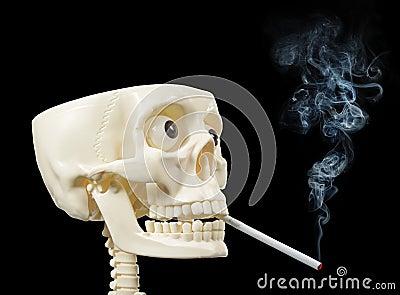 Smoker human skull