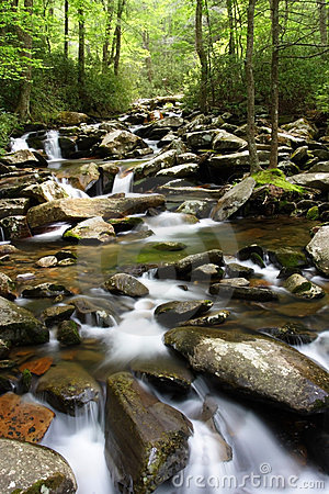 Smokey Mountains Creek