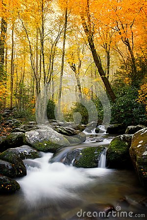 Free Smokey Mountains National In The Fall Stock Image - 116121051