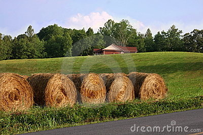 Smoky Mountain haystacks