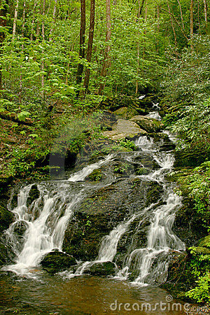 Smoky Mountain Waterfall