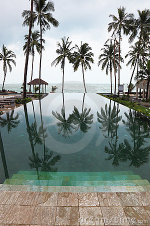 Smooth water pools reflects the high scenic palm