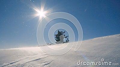 Snöa blåst av vinden i bergen, häftiga snöstormen, snöstorm lager videofilmer