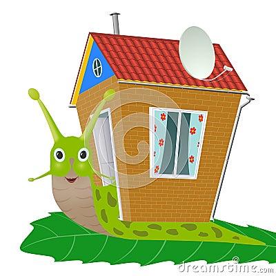 Free Snail Stock Photo - 21468080