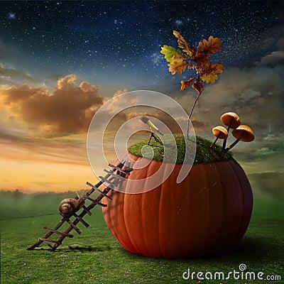 Snail-Astronomer