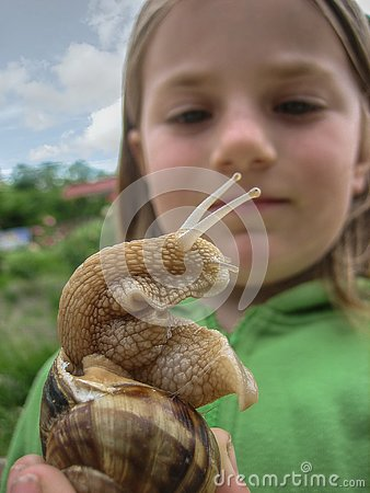 Free Snail Closeup On The Background Of The Face Of The Child.. Stock Photography - 133411702