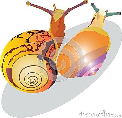 Snail crawling up