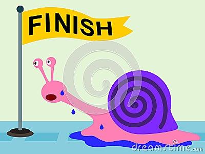 Snail Determination
