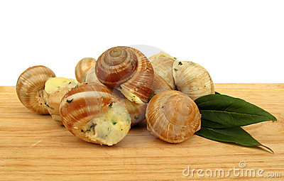 Snail escargot prepared as food