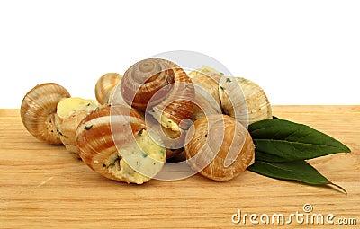 Snail escargot prepared as food