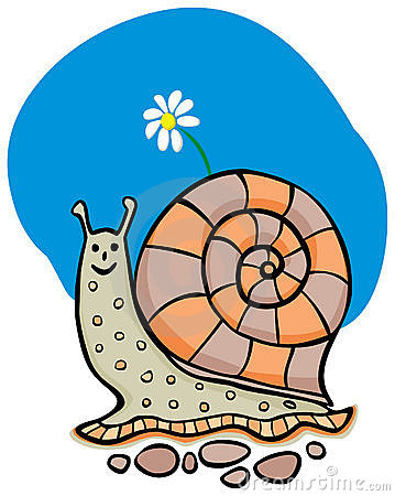 Snail with the flower