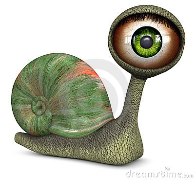 Snail (Green Color Eye)