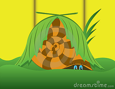 Snail hid from fear