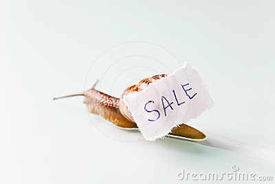 Snail selling the house.