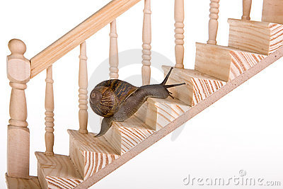 Snail on stairs