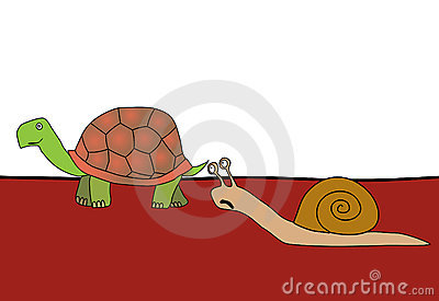 Snail and tortoise - race