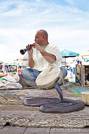 Snake charmer cobra dancing in Marrakesh Morocco Editorial Photography