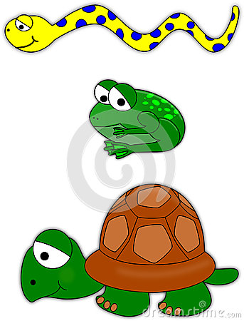 Snake, frog and turtle