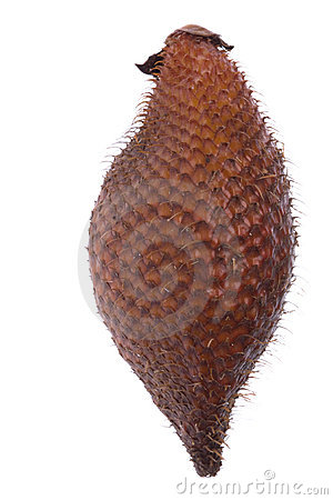 Snake Fruit Isolated