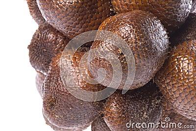 Snake Fruits Isolated
