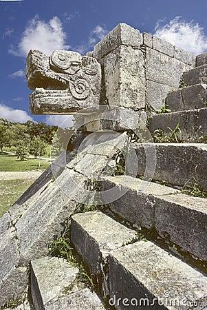 Snake head, Mexico