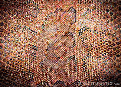 Snake leather