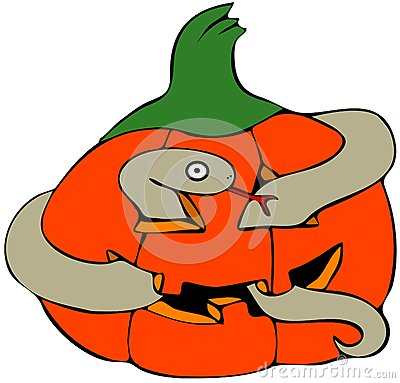 Snake in a pumpkin
