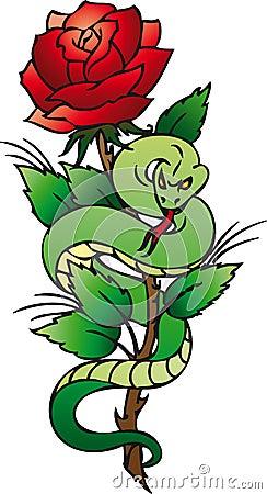 Snake & rose
