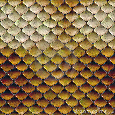Snake Scales - Royalty Free Texture - Stock Photo