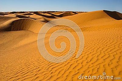 Snake shaped dunes