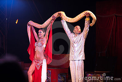 Snake show in circus Editorial Stock Image