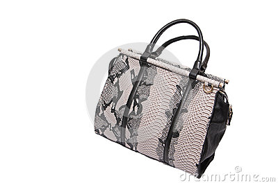 Snake skin leather bag