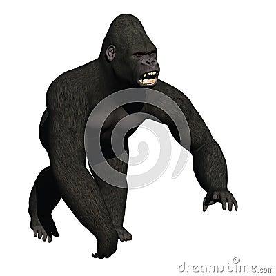 Snarling gorilla