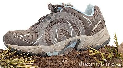 Sneaker In Nature