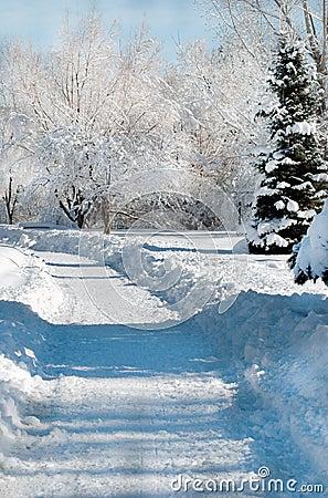Sneeuw behandelde weg