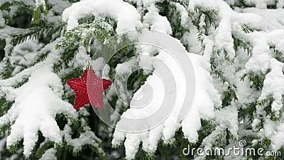 Sneeuw die op spar met rode Kerstmisster vallen stock footage