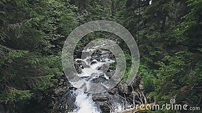 Snel rivierbeekje van de Tatry berg met rapids stock videobeelden