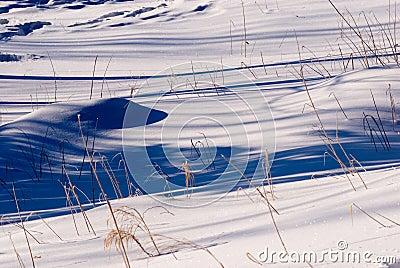 Snöig område