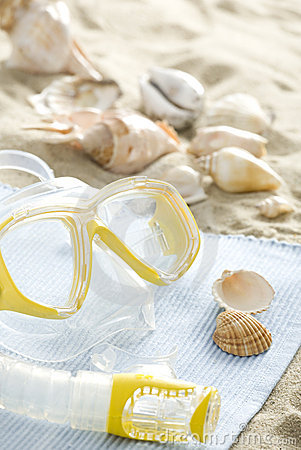 Snorkel mask and shells