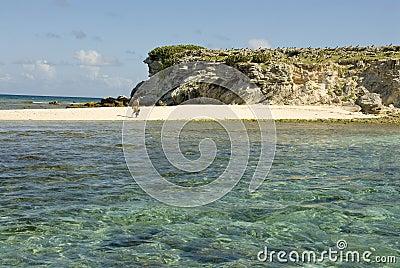Snorkeler on beach