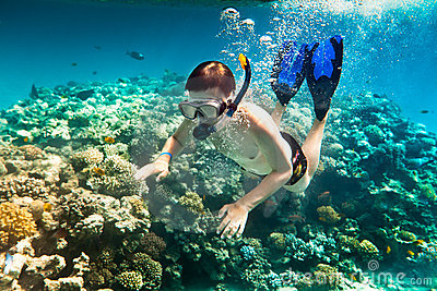 Snorkeler.  Red Sea Royalty Free Stock Photos - Image: 15369798