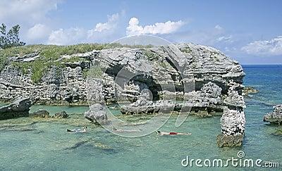 Bermuda Snorkeling Diving